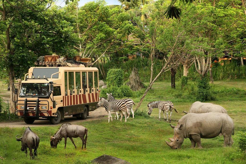 Harga Tiket Masuk Bali Safari Park